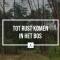 Tot rust komen in het bos WordFit.be Lifestylecoaching