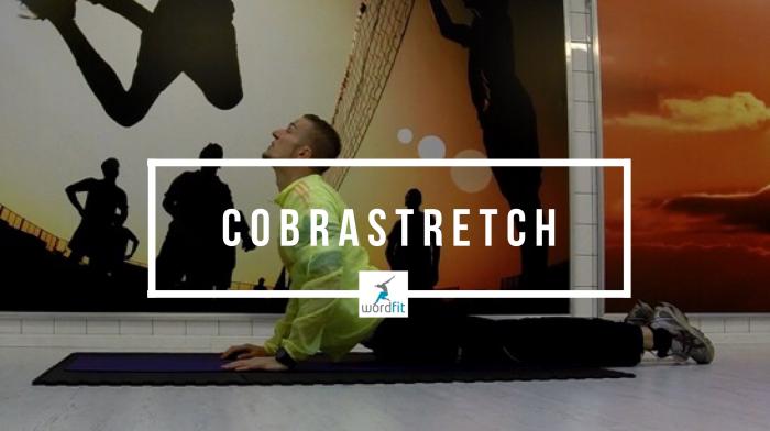Cobrastretch WordFit.be