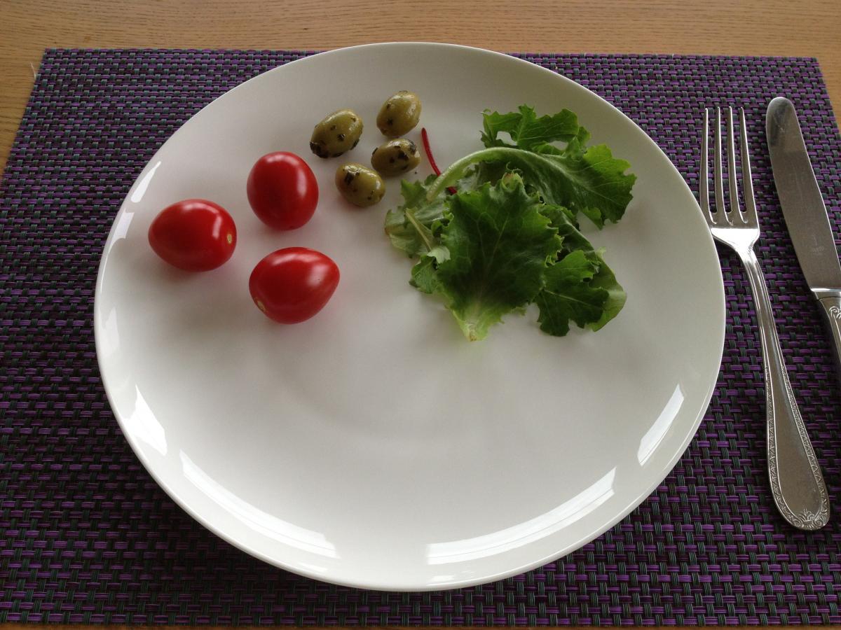 dieet 1600 kcal per dag